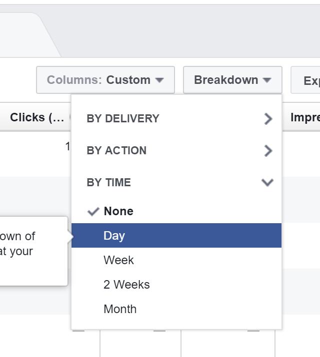 Tracking Facebook Ads in Google Analytics - Day Breakdown